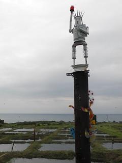 鄭炳和創作的自由女神,高高豎立在溼地旁。