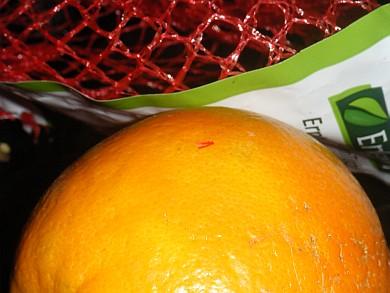 orangenschleife2