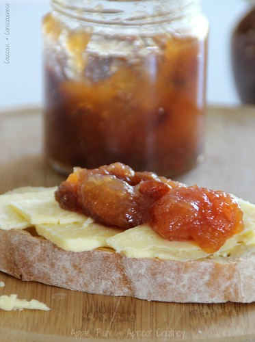 Apple, Plum & Apricot Chutney 2