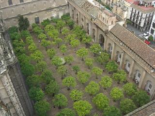 Image of La Giralda near Triana. sevilla spain europe cathedral catedral seville andalusia giralda lagiralda catedraldesantamaría catedraldesantamaríadelasede