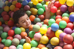 sweetness(0.0), food(0.0), play(1.0), ball pit(1.0), toy(1.0),