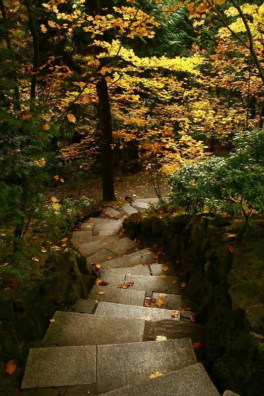 steps v  2911