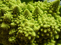 vegetable, flower, flora, green, produce, broccoflower,
