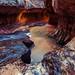 The Subway @ Zion National Park {Explore}