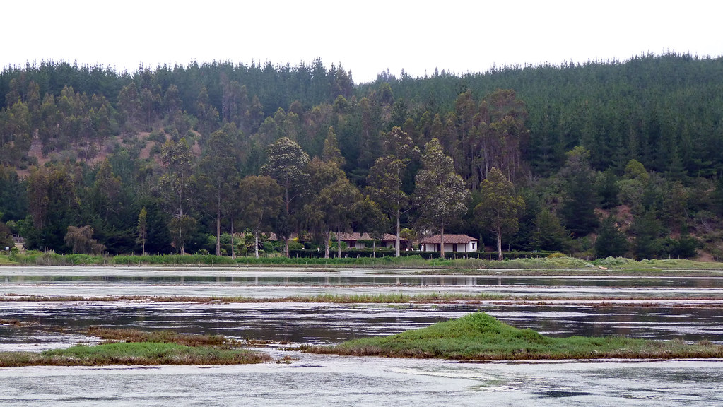 Laguna Boyeruca, Vichuquén