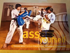 contact sport, taekwondo, sports, combat sport, martial arts, karate, adult,