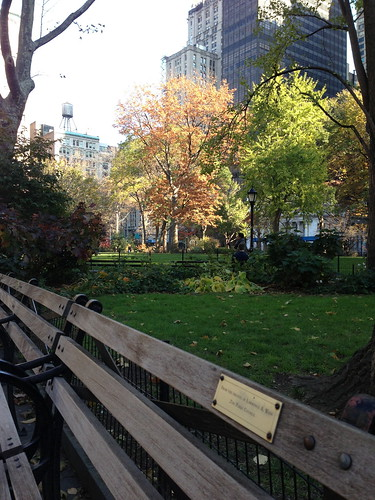 a bench in fall
