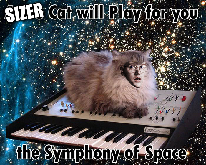 Sizer Cat