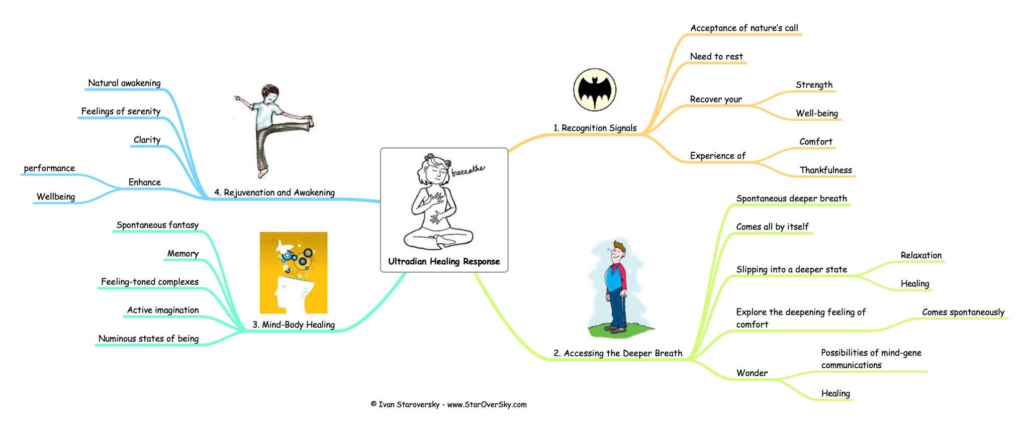 Ultradian Healing Response