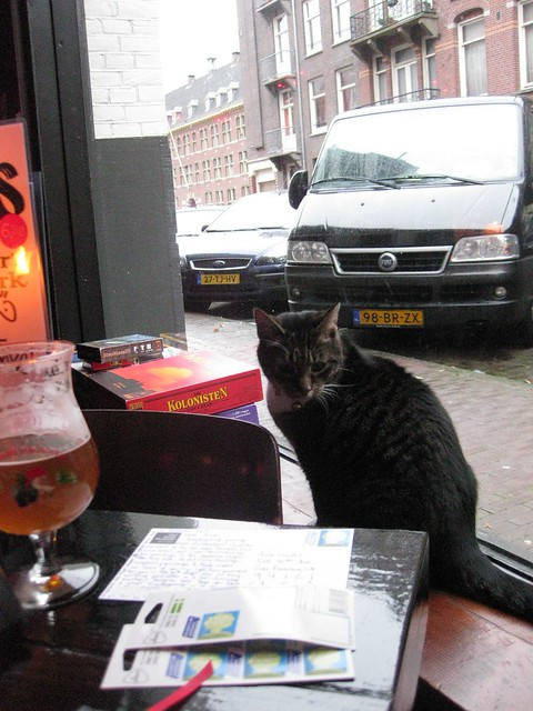 Postcards, beer, cat