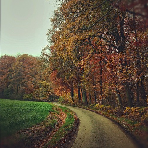 The long winding road…