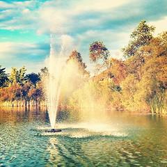 fountain at Swan Lake