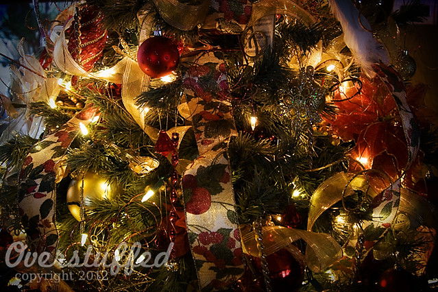 IMG_5694 Christmas Tree 2012 web