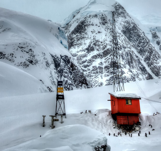 Argentinian Research Station Besieged by Penguins