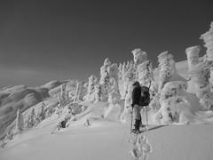 Mt Ann 138