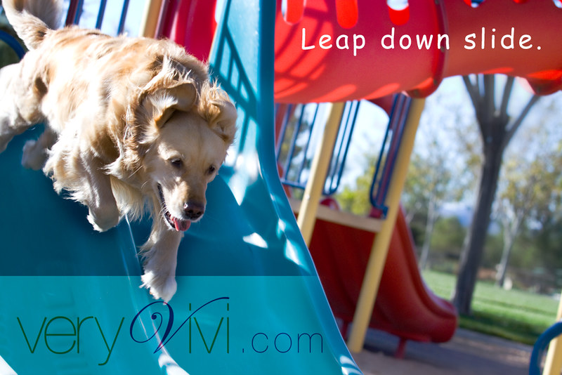 Leap Down Slide