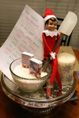 Elfie-With-Seeds