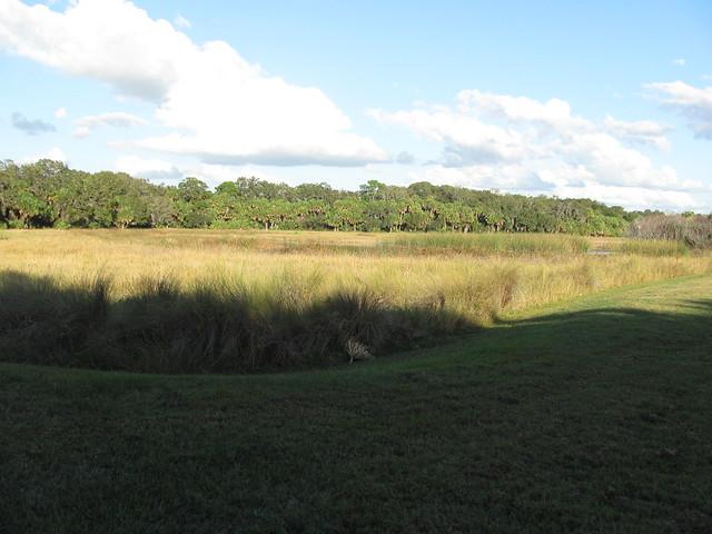 Florida habitat