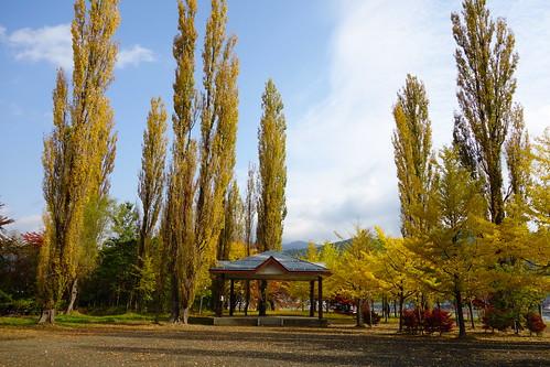 Autumn in Kawaguchiko