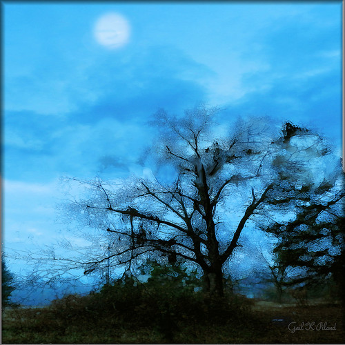 blue sky moon tree clouds photoshop landscape path gailpilland