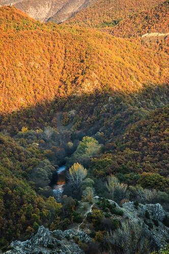 autumn river landscape struma