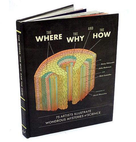 wherewhyhow