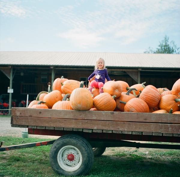 2012_0929_Pumpkins08.jpg
