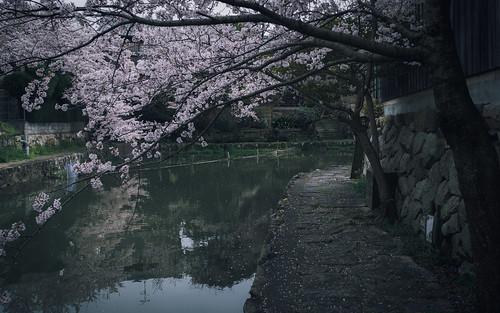 滋賀.八幡堀 │Shiga.Hachiman bori