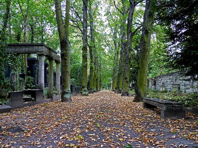 Jüdischer Friedhof Berlin-Weißensee (13)