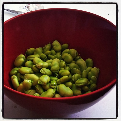 Shelling homegrown broadbeans.... #urbanfarm