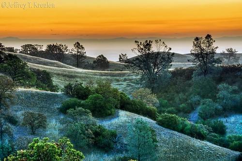 california tree nature grass pine sunrise fence landscape hill arbuckle manzanita colusacounty
