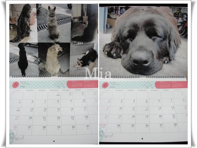2013年掛曆-09
