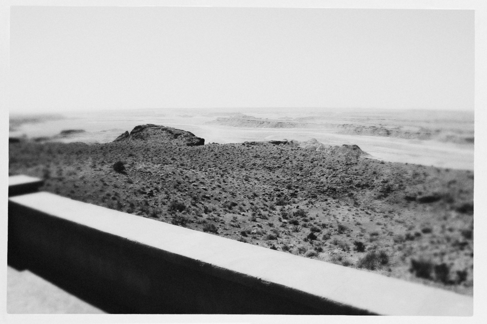 View of the Painted Desert/Petrified Forest
