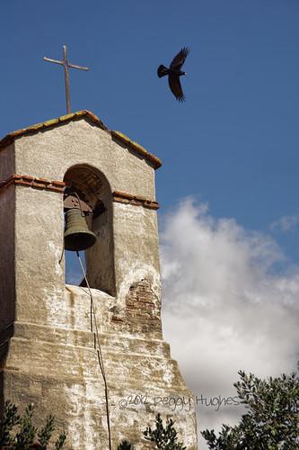 california black bird museum bell landmark historic belltower crow orangecounty peggy missionsanjuancapistrano raven sanjuancapistrano ©allrightsreserved ©peggyhughes october242012
