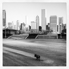 Ernie's ready to take on the city.