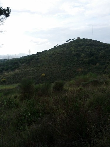 20121118_caminada_regularitat_bdn_019