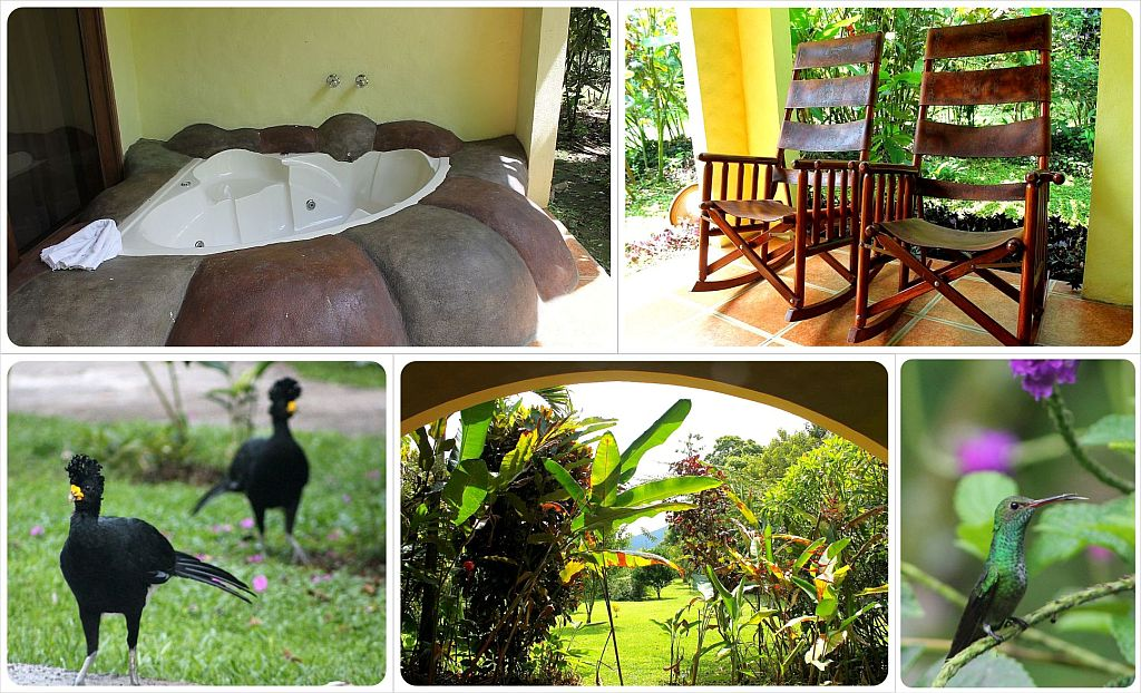 Mountain Paradise Hotel in Arenal Costa Rica with hummingbirds