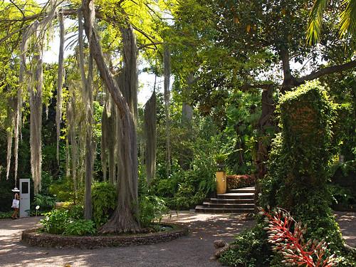Living History in The Botanical Gardens of Puerto de la Cruz « Tenerife Holid...