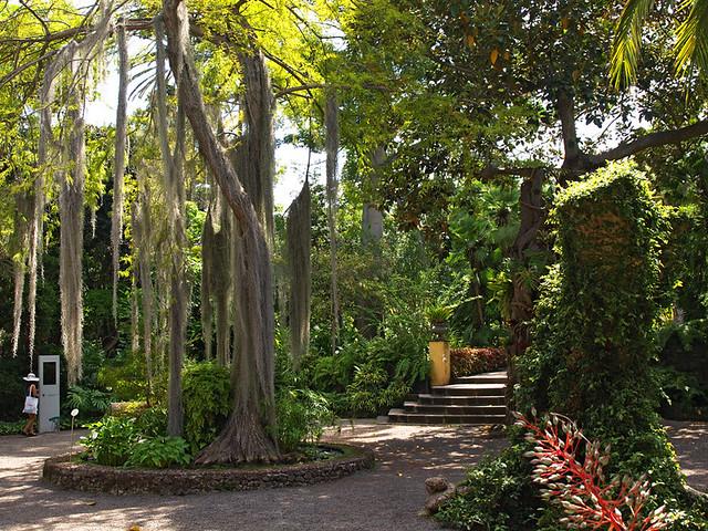 Botanical Gardens Puerto De La Cruz Tenerife Flickr