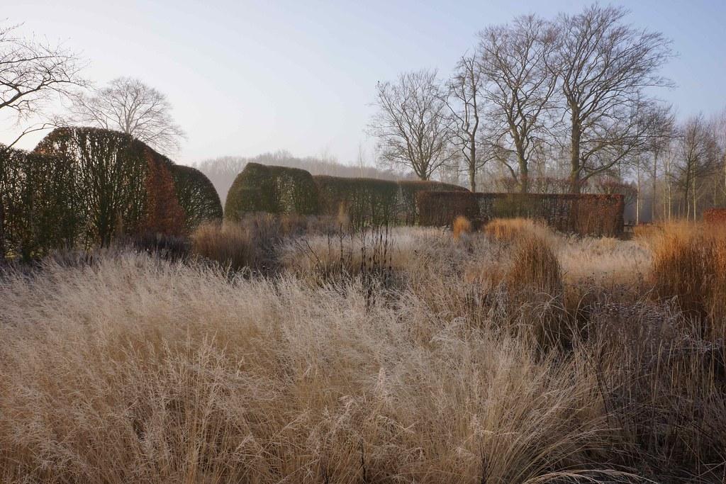 Piet oudolf 39 s most recent flickr photos picssr for Piet oudolf private garden