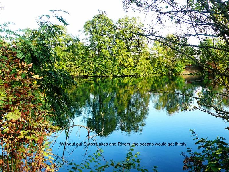 River Aare, Feldbrunnen