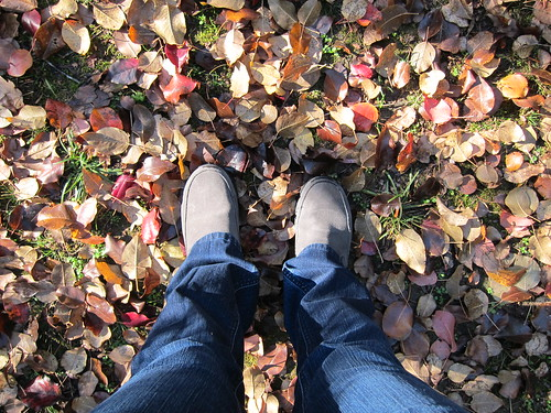 happy fall feet