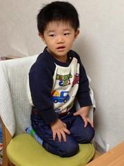 なぜか椅子の上で正座するとらちゃん (2012/11/29)