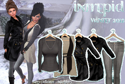 NEW!!! Intrepid:: Winter 2012 Blackberry