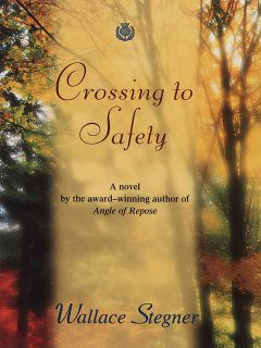 crossing_safety