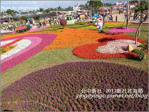 台中新社_2012新社花海節20121125_R0010563