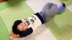転がるとらちゃん 2012/12/6