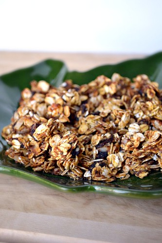 crunchy pumpkin pie granola with raisins