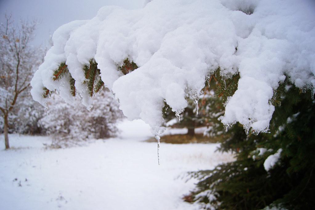 winteradventure1