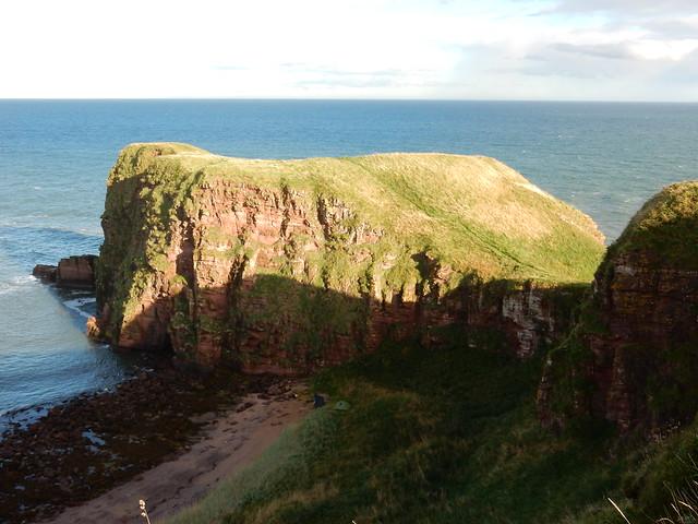Red sandstone cliffs, Auchmithie